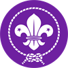 2nd Falmouth (All Saints) Scout Group logo