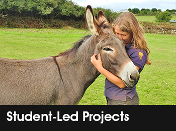 Student-Led Projects