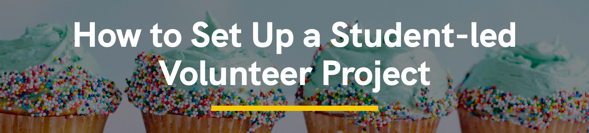 How to Set Up a Student-led Volunteer Project