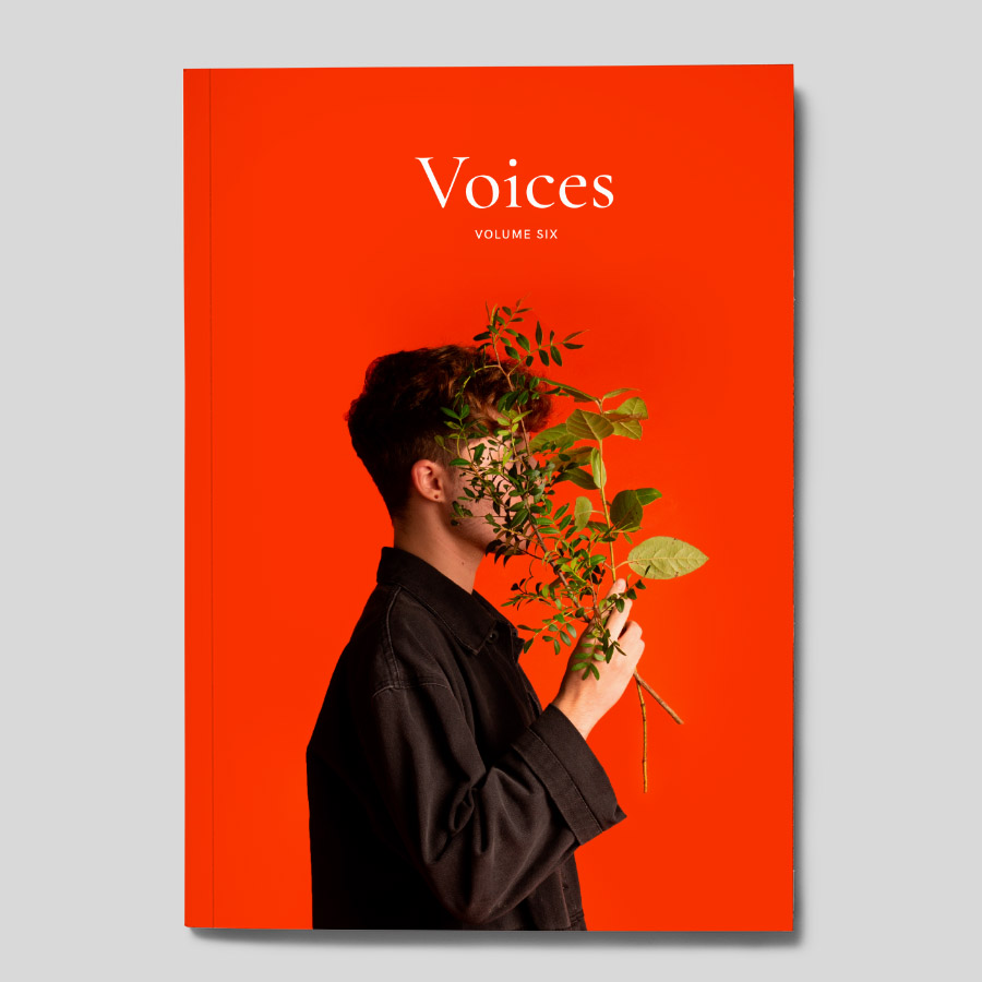 Voices Volume Six