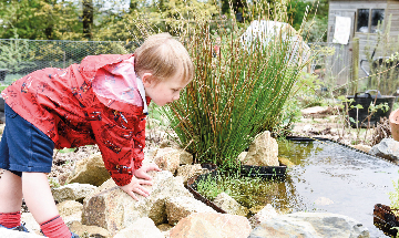 Photo of child looking in a pond
