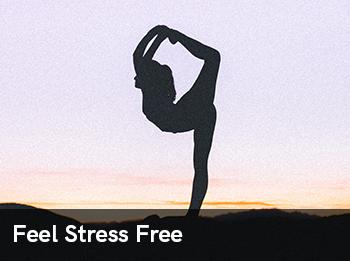Feel Stress Free