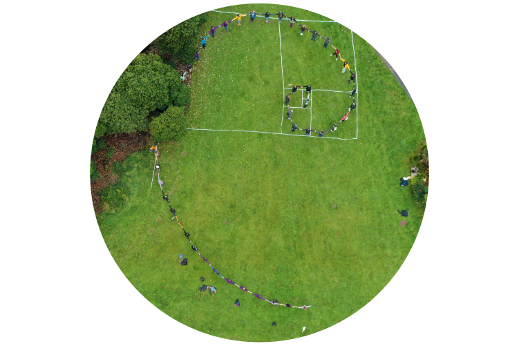 Aerial photo of field