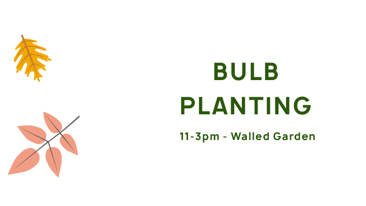 Tree and Bulb Planting, 1-3pm, TBC